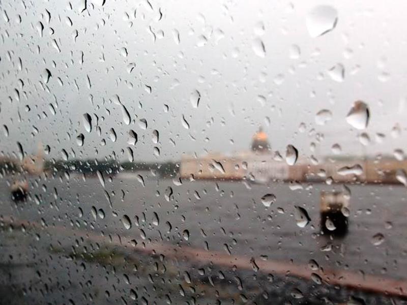 Фото дождь за окном летом питер